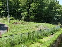 その他現地写真:南側隣地は緑地保全地域